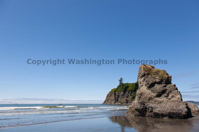 Ruby Beach 102