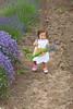 Lavender Farm 128
