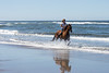 Long Beach Horseback Riding 50