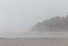 Kalaloch Fog 11