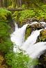 Sol Duc Falls 15