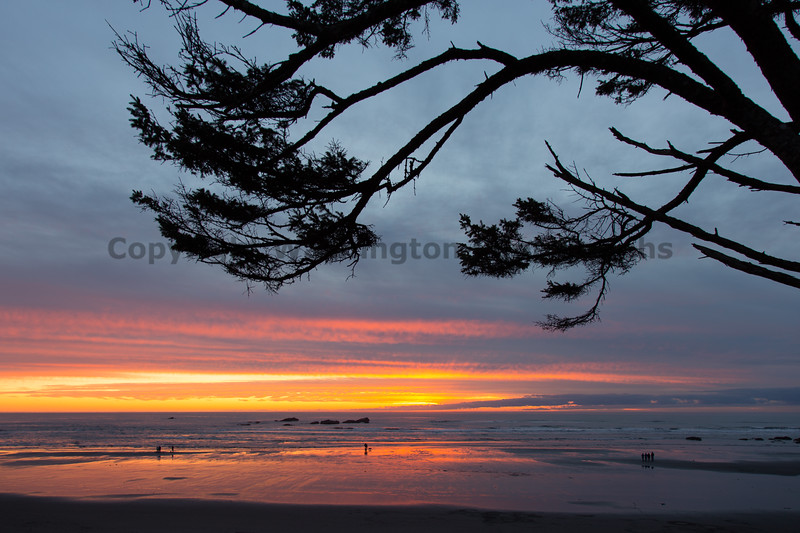 Kalaloch Sunset 24