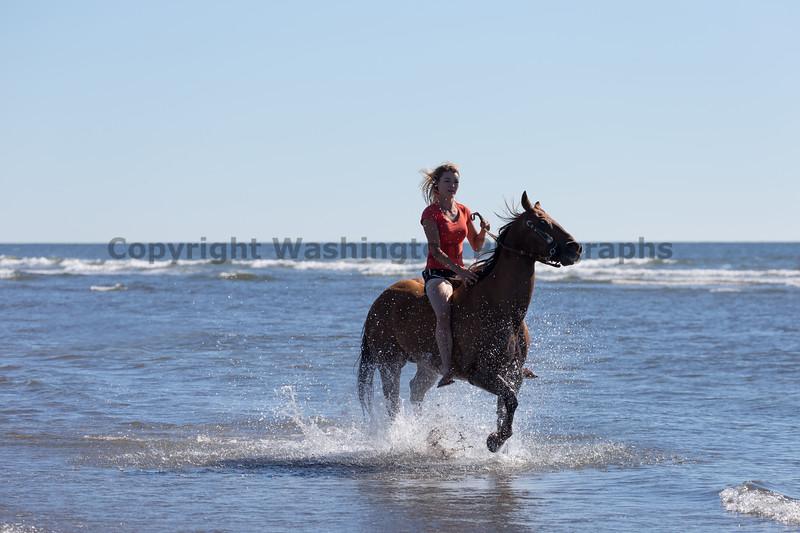 Long Beach Horseback Riding 20