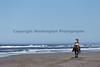 Long Beach Horseback Riding 46