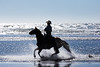 Long Beach Horseback Riding 36