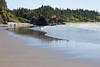 Ruby Beach 120