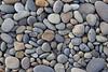 Ocean Beachcombing 46