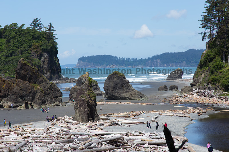 Ruby Beach 174