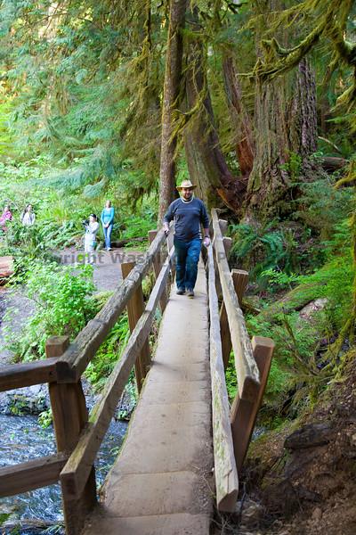 Marymere Falls Trail 17