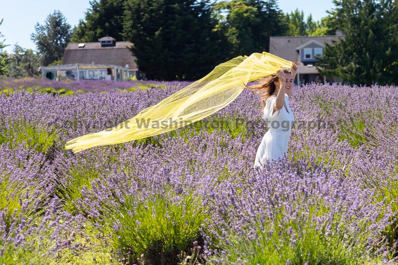 Lavender Farm 354