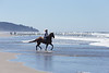 Long Beach Horseback Riding 52