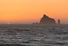 Rialto Beach 13