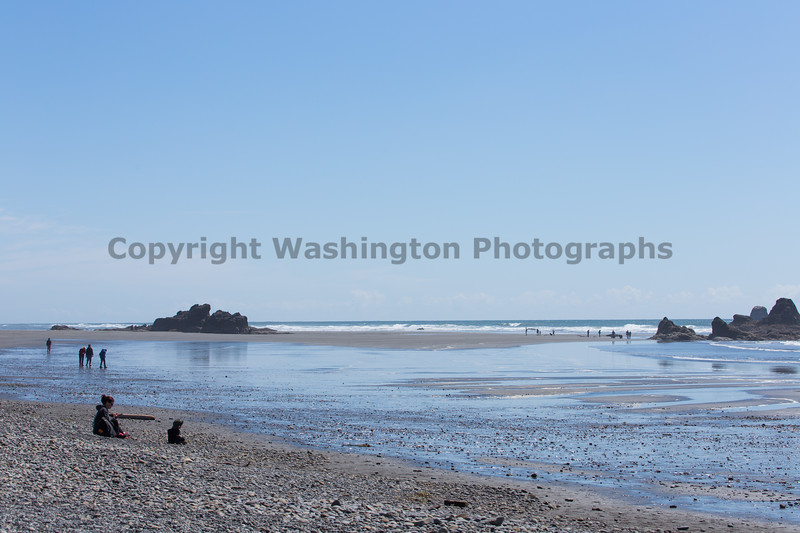Ruby Beach 224