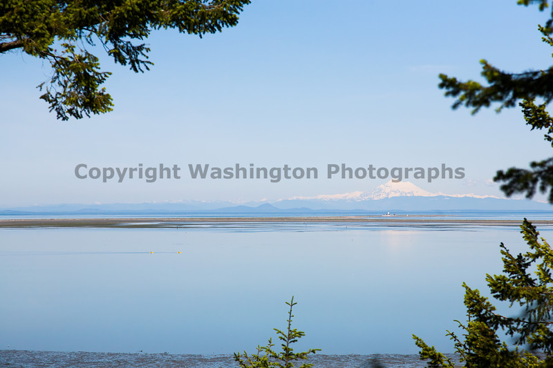 Dungeness Spit 10