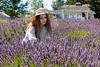 Lavender Farm 252