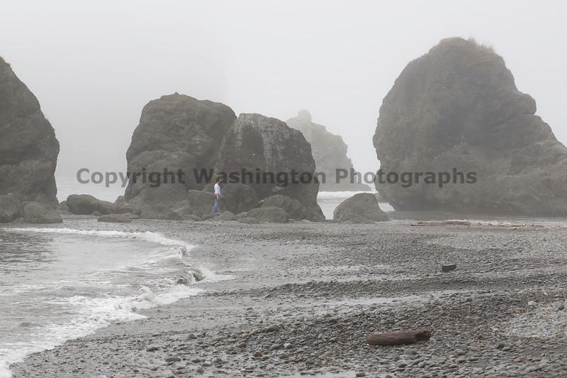 Ruby Beach 73