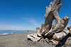 Dungeness Spit 66