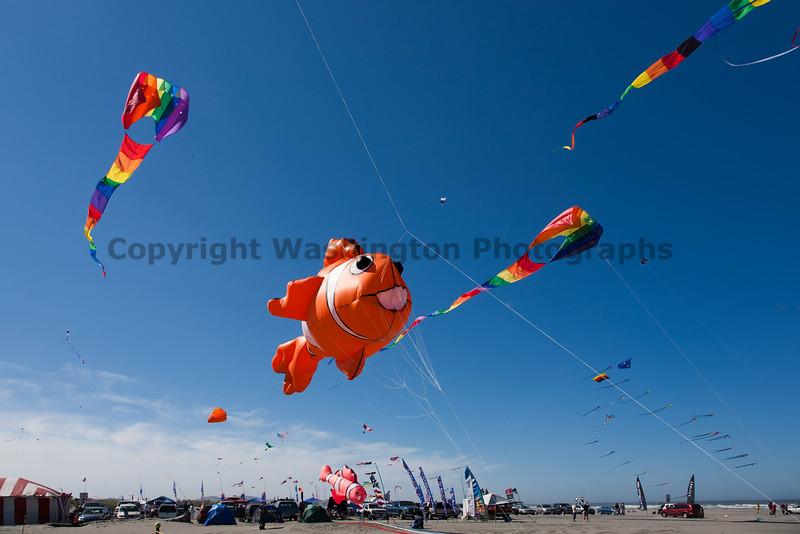 Long Beach Kite Festival 31