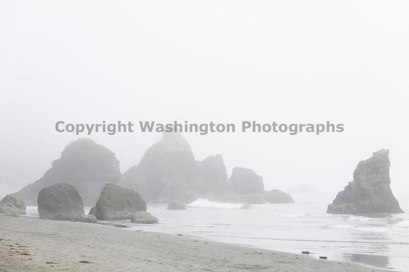 Ruby Beach 65