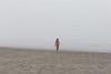 Kalaloch Fog 21