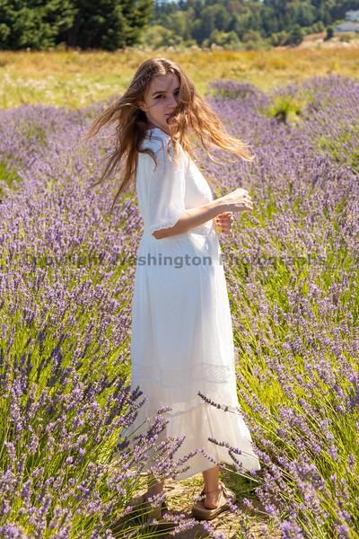 Lavender Farm 345