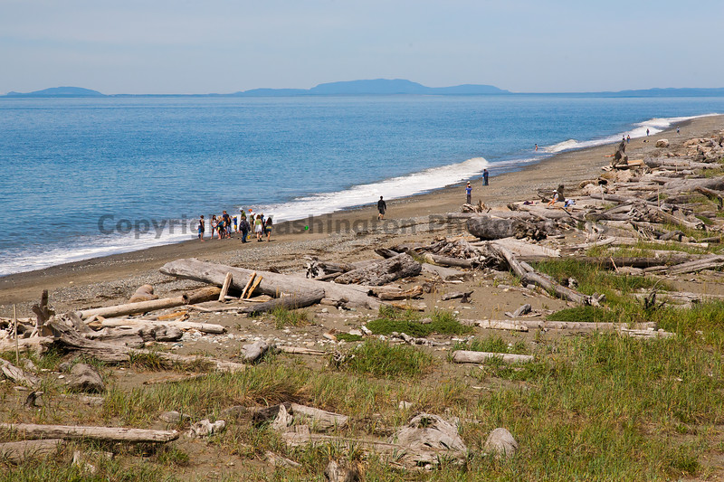 Dungeness Spit 16