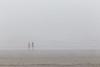 Kalaloch Fog 16