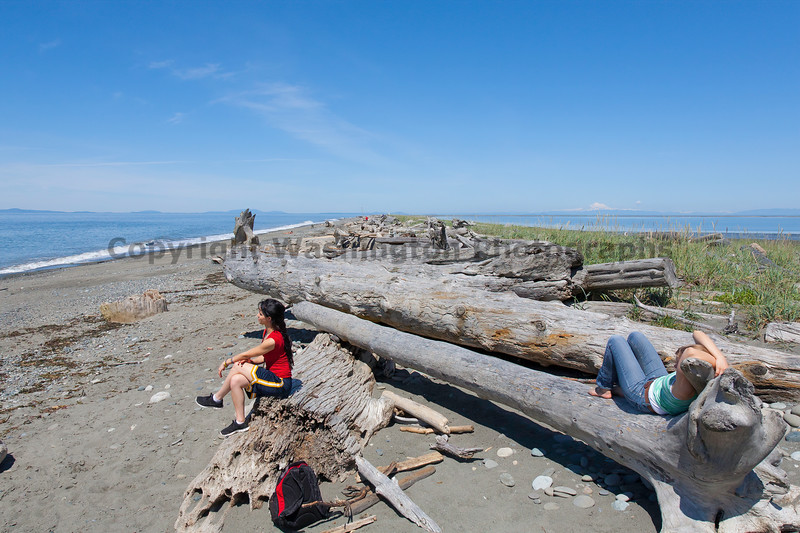 Dungeness Spit 56