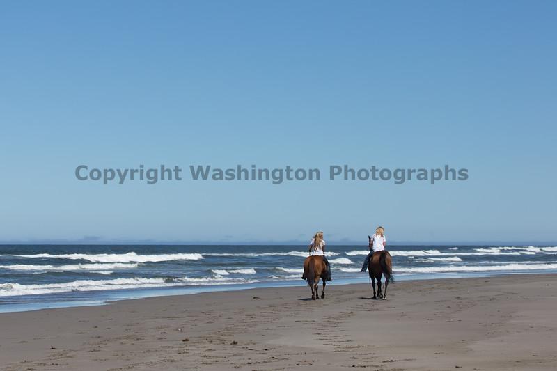 Long Beach Horseback Riding 39