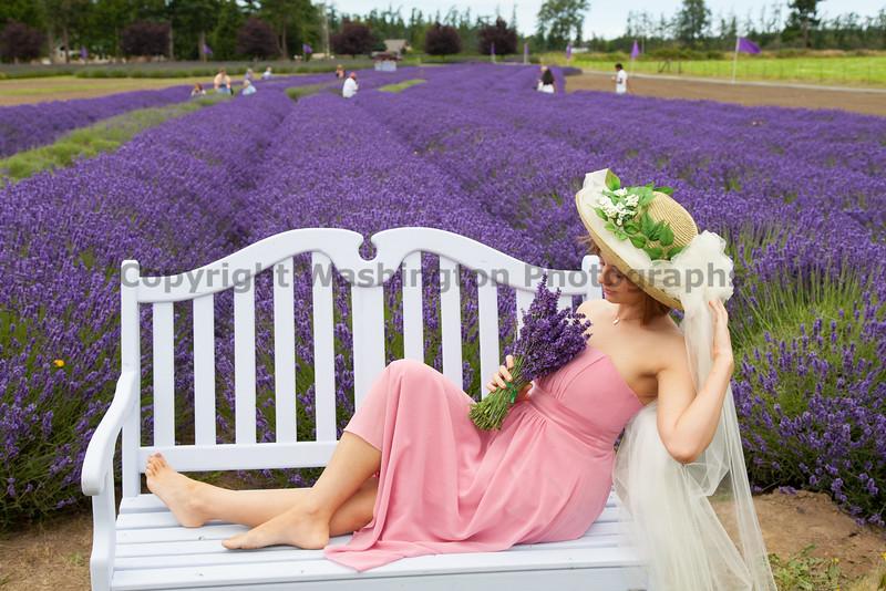 Lavender Farm 172