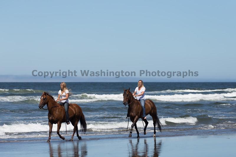 Long Beach Horseback Riding 40