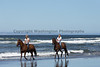 Long Beach Horseback Riding 40