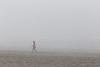 Kalaloch Fog 14