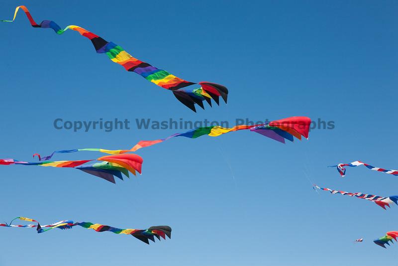 Long Beach Kite Festival 19