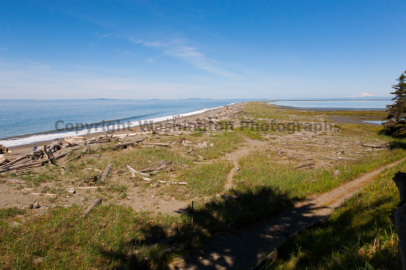 Dungeness Spit 12