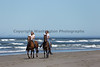 Long Beach Horseback Riding 38