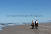 Long Beach Horseback Riding 48