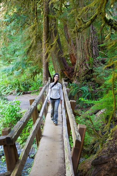 Marymere Falls Trail 21