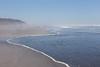 Kalaloch Beach 12