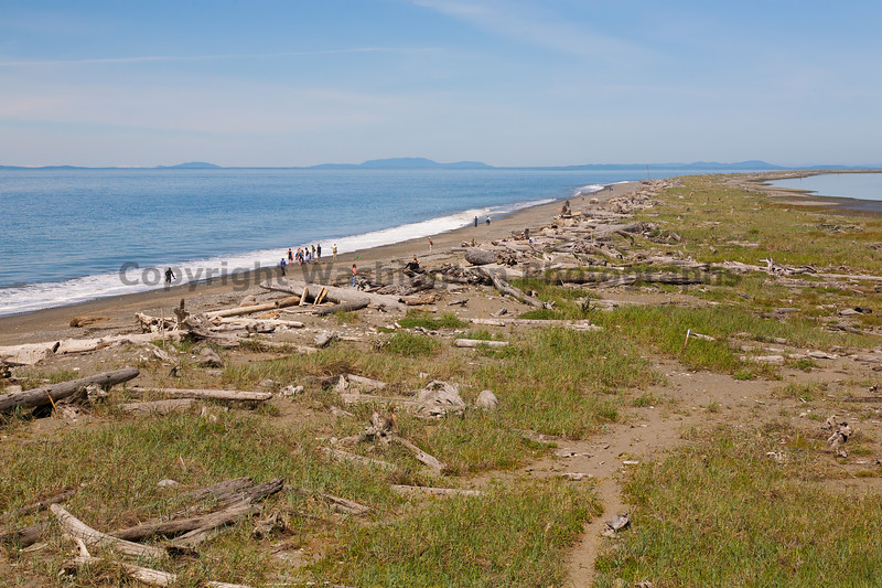 Dungeness Spit 13