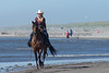 Long Beach Horseback Riding 35