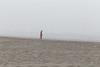 Kalaloch Fog 20