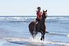 Long Beach Horseback Riding 22