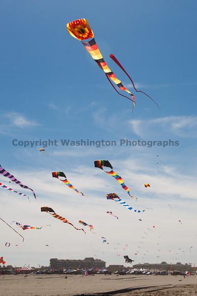 Long Beach Kite Festival 59