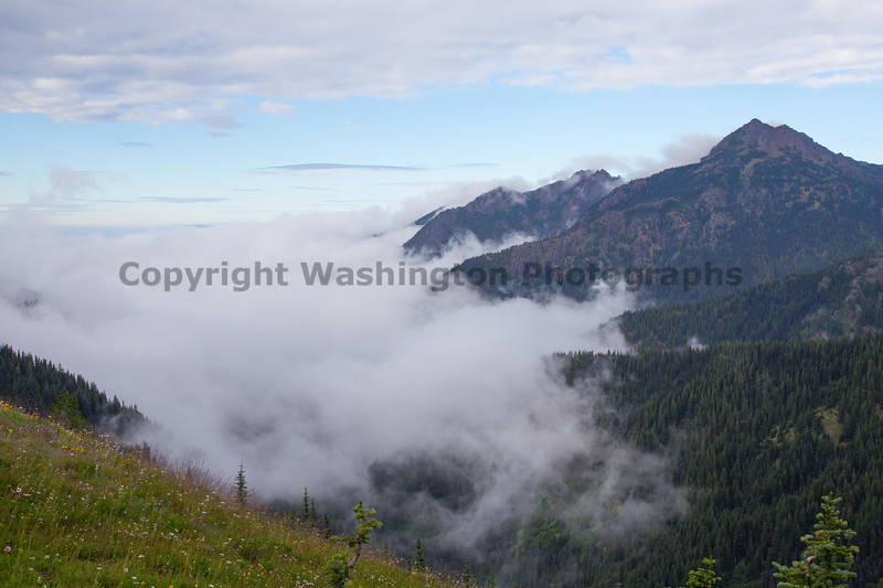 Hurricane Ridge 42
