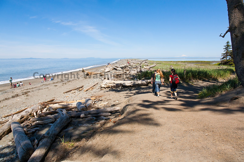 Dungeness Spit 22