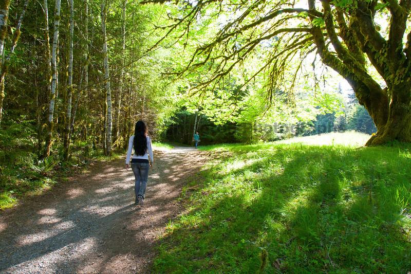 Marymere Falls Trail 11