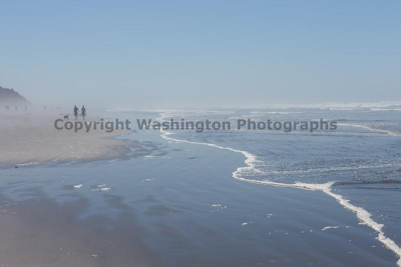 Kalaloch Beach 11