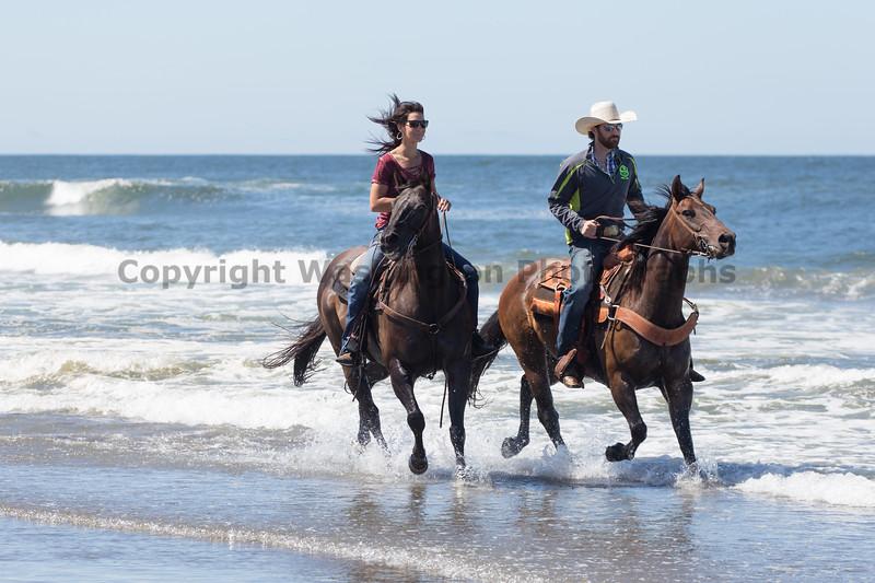 Long Beach Horseback Riding 30
