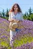 Lavender Farm 273